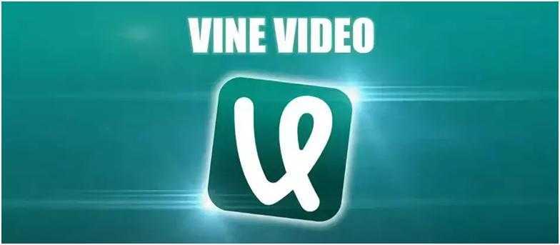 VineVideo – лучший паблик с видео
