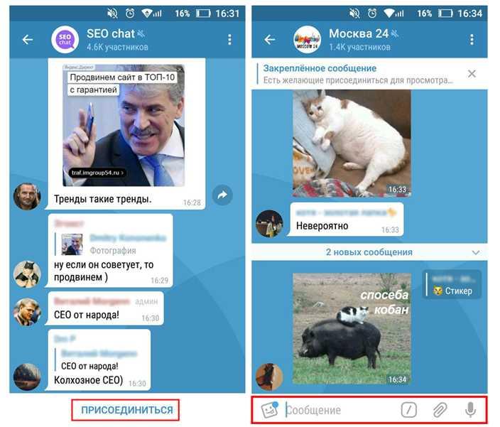 Как работать с сообщениями в Телеграм