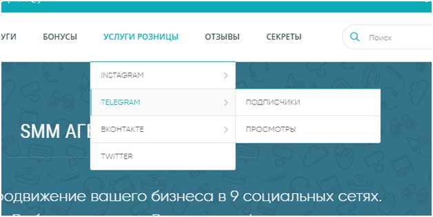 выбираем раздел на сайте prtut.ru для раскрутки Телеграм