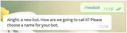Используем команду /newbot для создания нового бота
