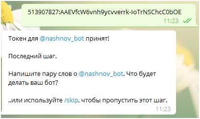 При создании nashnov_bot нужно ввести api-токен, полученный ранее