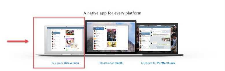 Веб версия Телеграм, работаем с чатом с официального сайта