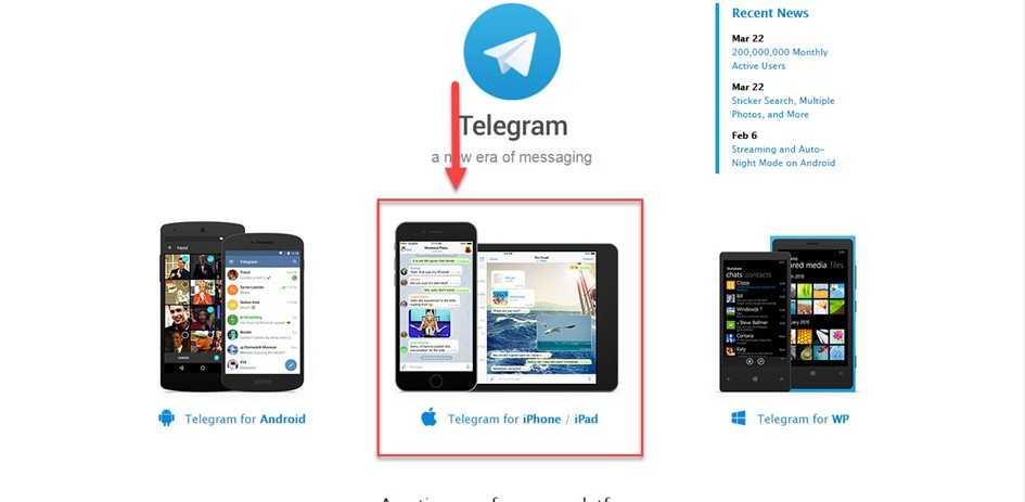Как скачать и установить Телеграм на Айфон или Айпад с оф. сайта