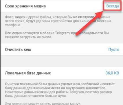 Настройка автоматического удаления кэша Телеграм - можно выставить срок хранения