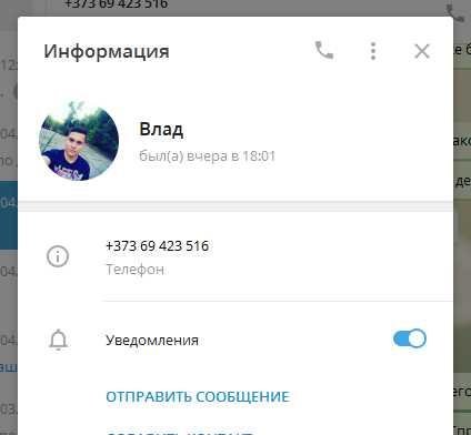 как открыть всю информацию о другом человеке в Телеграм - пример