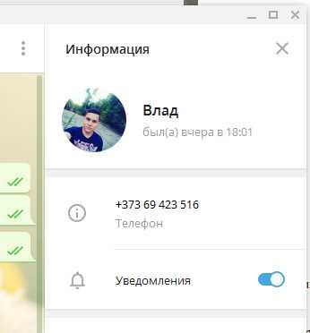 Находим персональные данные собеседника в чате Telegram