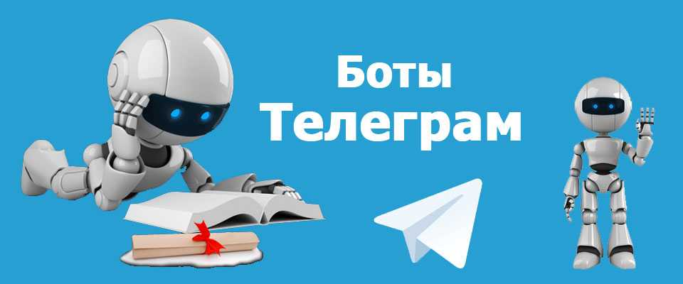 Боты Телеграм общие принципы работы - что они умеют делать