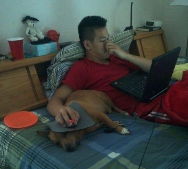 сидеть за компьютером