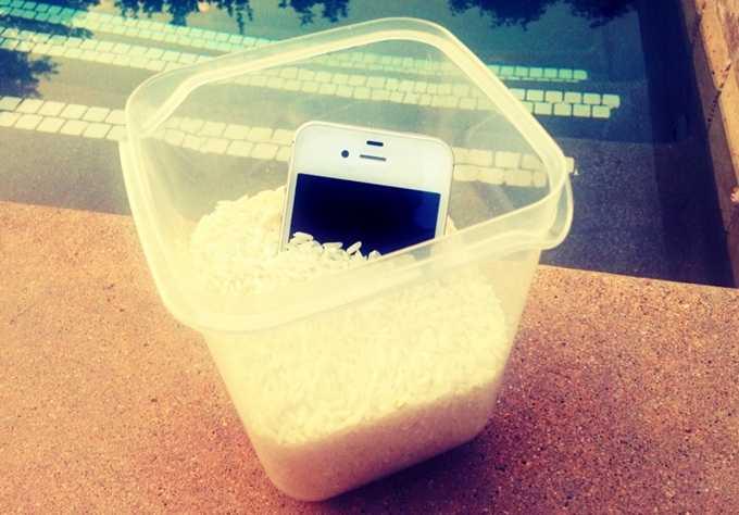 айфон в рисе
